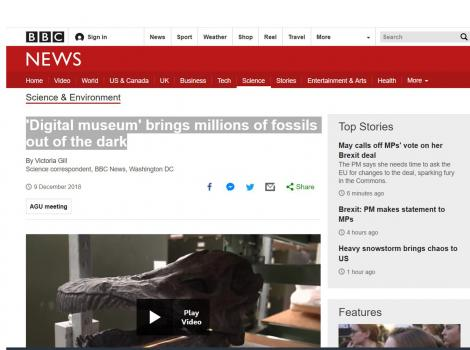 'Digital museum' brings millions of fossils out of the dark